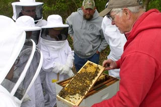 Photo of beekeeping.